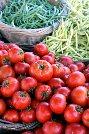 Ripley County Farmers Market